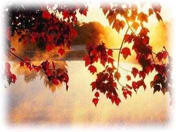 Осень фото санкт-петербург